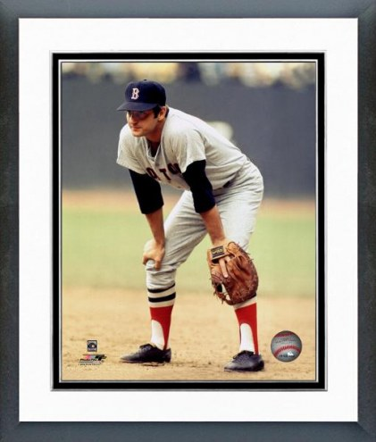 Boston Red Sox Carl Yastrzemski Hands on Knee Framed Photo