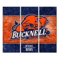 Bucknell Bison Triptych Double Border Canvas Wall Art