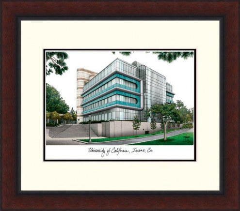 California Irvine Anteaters Legacy Alumnus Framed Lithograph