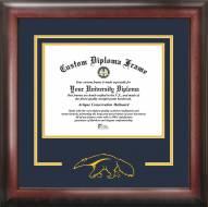 California Irvine Anteaters Spirit Diploma Frame
