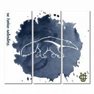 California Irvine Anteaters Triptych Watercolor Canvas Wall Art