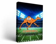 Campbell Fighting Camels Stadium Canvas Wall Art