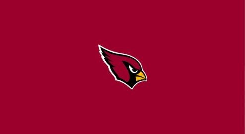 Arizona Cardinals NFL Team Logo Billiard Cloth