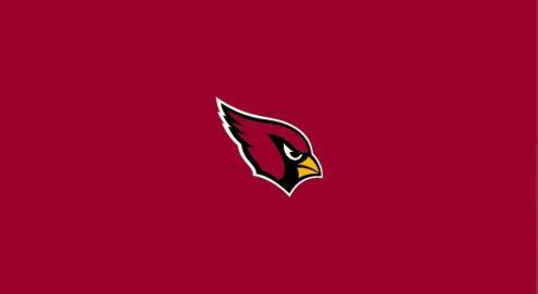 Arizona Cardinals NFL Team Logo Billiard Cloth