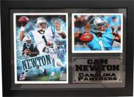 "Carolina Panthers 12"" x 18"" Cam Newton Photo Stat Frame"
