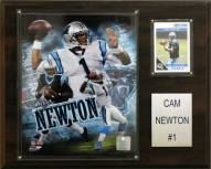 "Carolina Panthers Cam Newton 12 x 15"" Player Plaque"