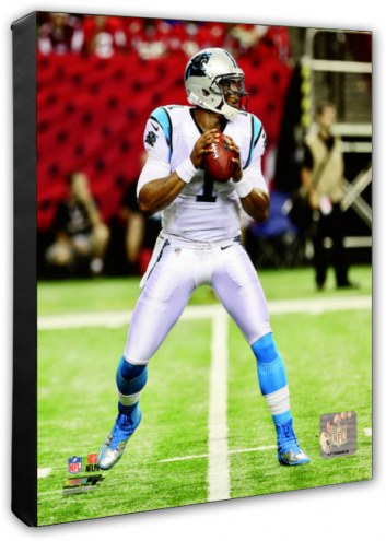 Carolina Panthers Cam Newton Action Photo