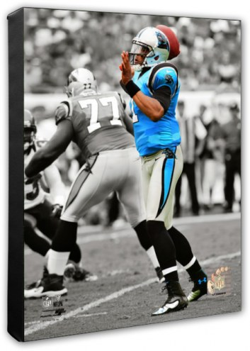 Carolina Panthers Cam Newton Spotlight Action Photo