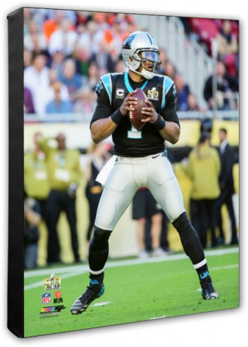 Carolina Panthers Cam Newton Super Bowl 50 Photo