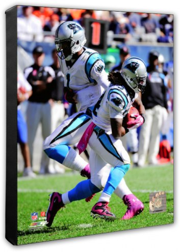 Carolina Panthers DeAngelo Williams & Cam Newton Action Photo