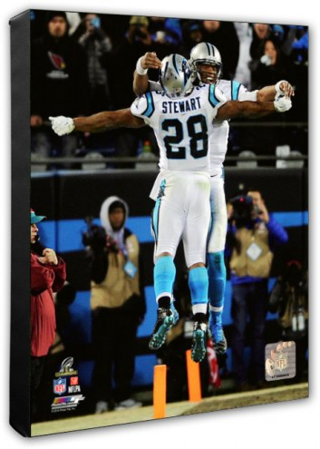 Carolina Panthers Jonathan Stewart & Cam Newton 2015 NFC Championship Game Photo