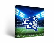Central Connecticut State Blue Devils Stadium Canvas Wall Art