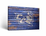 Central Connecticut State Blue Devils Weathered Canvas Wall Art