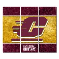 Central Michigan Chippewas Triptych Double Border Canvas Wall Art