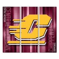 Central Michigan Chippewas Triptych Rush Canvas Wall Art