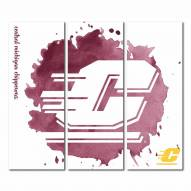 Central Michigan Chippewas Triptych Watercolor Canvas Wall Art