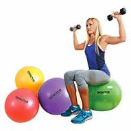 Champion Barbell Reactor Core Stability Ball
