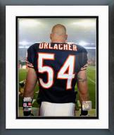 Chicago Bears Brian Urlacher Super Bowl XLI Framed Photo