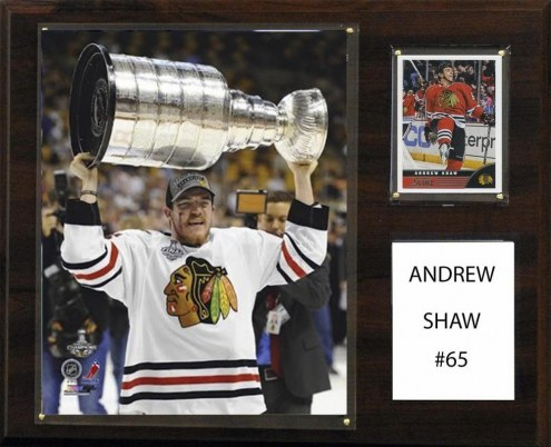 "Chicago Blackhawks Andrew Shaw 12"" x 15"" Player Plaque"