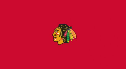 Chicago Blackhawks NHL Team Logo Billiard Cloth