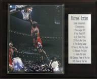 "Chicago Bulls 12"" x 15"" Michael Jordan Career Stats Plaque"