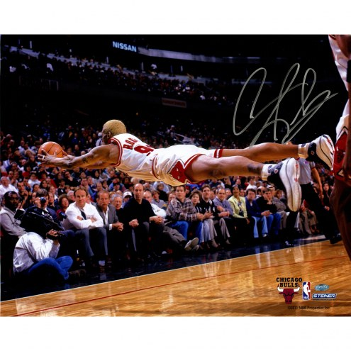 """Chicago Bulls Dennis Rodman Dive For Loose Ball Signed 16"""" x 20"""" Photo"""