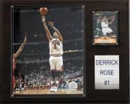 "Chicago Bulls Derrick Rose 12"" x 15"" Player Plaque"