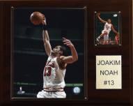"""Chicago Bulls Joakim Noah 12"""" x 15"""" Player Plaque"""