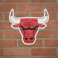 Chicago Bulls Outdoor Logo Graphic