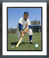 Chicago Cubs Don Zimmer Posed Framed Photo