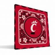 Cincinnati Bearcats Eclectic Canvas Print
