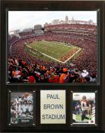 "Cincinnati Bengals 12"" x 15"" Stadium Plaque"