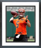 Cincinnati Bengals A.J. McCarron Action Framed Photo