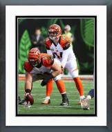 Cincinnati Bengals Andy Dalton Action Framed Photo