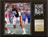 "Cincinnati Bengals Anthony Munoz 12 x 15"" Player Plaque"