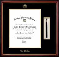 Citadel Bulldogs Diploma Frame & Tassel Box
