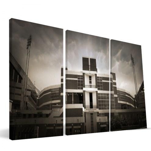 "Clemson Tigers 24"" x 48"" Stadium Canvas Print"