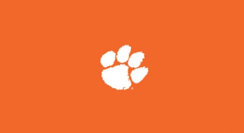 Clemson Tigers College Team Logo Billiard Cloth