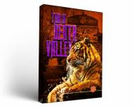 Clemson Tigers Death Valley Canvas Wall Art