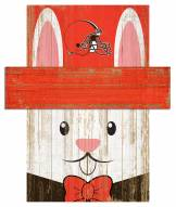 """Cleveland Browns 6"""" x 5"""" Easter Bunny Head"""