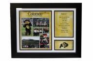 "Colorado Buffaloes 12"" x 18"" Photo Stat Frame"