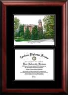 Colorado Buffaloes Diplomate Diploma Frame
