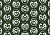 Colorado State Rams College Repeat Area Rug