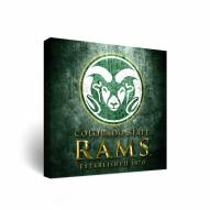 Colorado State Rams Museum Canvas Wall Art