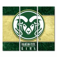 Colorado State Rams Triptych Double Border Canvas Wall Art