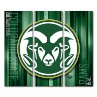 Colorado State Rams Triptych Rush Canvas Wall Art