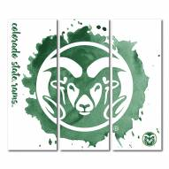 Colorado State Rams Triptych Watercolor Canvas Wall Art