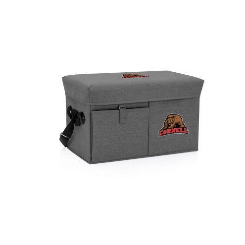 Cornell Big Red Ottoman Cooler & Seat