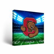 Cornell Big Red Stadium Canvas Wall Art