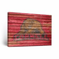 Cornell Big Red Weathered Canvas Wall Art